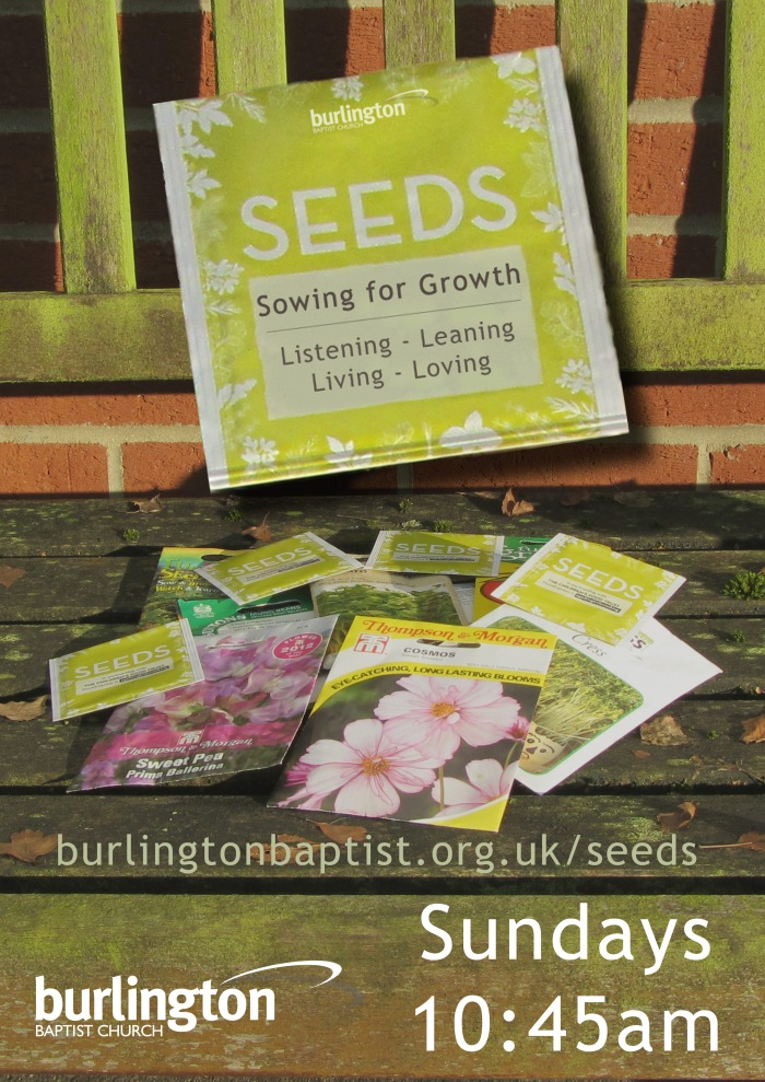 Sundays: Sowing for Growth