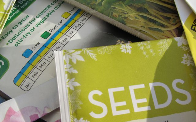 Seeds packet